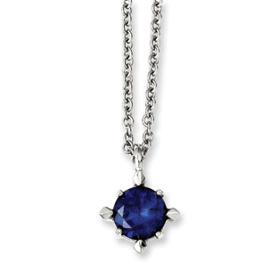 Women's Stainless Steel Solitaire Blue CZ Pendant Necklace Jewelry